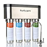 Purify Guru Stainless Steel Smart Reverse Osmosis Drinking Water Filter System, Tankless 400 GPD