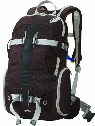 Camelbak Products Ante Hydration Packs (Cappucino, 100-Ounce )