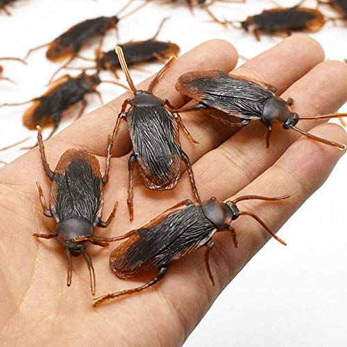 Happy New Year & Christmas Decorations M and F 10 Pcs/Set Funny Baby Kids Child Halloween Plastic Cockroaches Joke Decoration Props Rubber Toys Gift for Kids]()