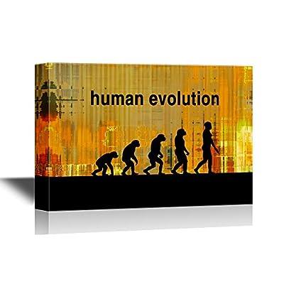Human Evoluti Human Evolution Process on Grunge Background