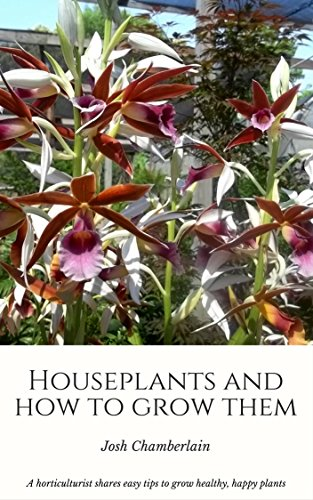 houseplants-and-how-to-grow-them-a-horticulturist-shares-easy-tips-to-grow-healthy-blossoming-housep