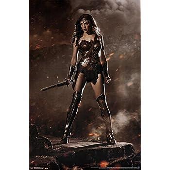 Amazon.com: Trends International Wonder Woman Shield Wall ...