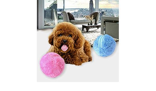 WTTTTW Bola de Juguete eléctrico para Mascotas 2 en 1 función ...