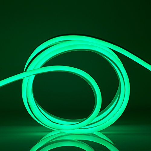 WYZworks Green Flexible Water Resistant Soft Double Side LED Neon Rope Light Strip Bar 100FT by WYZworks