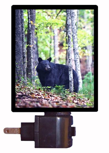 Black Bear Night Lights Kritters In The Mailbox Black