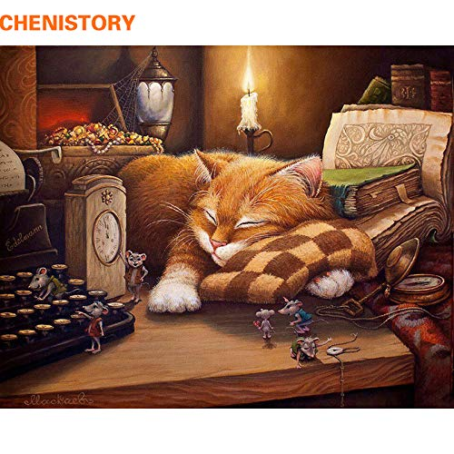 Amazon.com: Chitop Frameless Sleeping Cat DIY Painting by Numbers - Wall Art Picture Home Decor - Acrylic Paint by Numbers for Gift (40x50cm): Home & ...