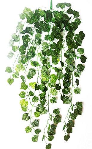 Grapevine Leaf - 6