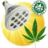 POT WIZARD LED Grow Light for Bigger Stronger and Faster Herbal Harvest. This Light for More Buds