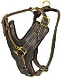 Dean and Tyler The Victory with Handle Dog Harness, Brown, Medium - Fits Girth Size: 23-Inch to 34-Inch