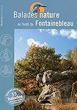 Balades nature en forêt de Fontainebleau 2013