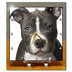 3dRose dc_4240_1 American Pit Bull Terrier Puppy Desk Clock