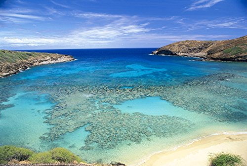 (Posterazzi Hawaii Oahu Hanauma Bay State Park View from Above Looking Into Coral Waters Poster Print, (19 x 12))
