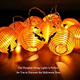 WmBetter Pumpkin String Lights Detachable Polyester Halloween Pumpkin Lanterns with 10 LED lights for Halloween Decoration