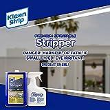 Klean Strip Premium Sprayable Paint