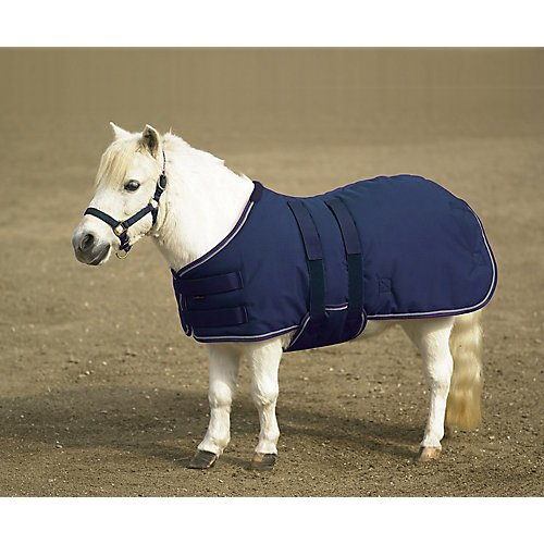 Kensington All Around Medium Weight Mini Turnout Blanket, Navy/Silver, XX-Large (Turnout Medium Weight)