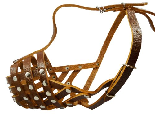 Secure Leather Mesh Dog Basket Muzzle #11 Brown – Pit Bull, AmStaff (Circumference 12″, Snout Length 3.5″), My Pet Supplies