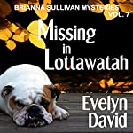 Missing in Lottawatah: Brianna Sullivan Mysteries | Evelyn David
