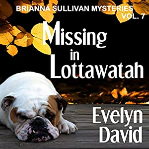 Missing in Lottawatah Audiobook