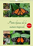 Petits Bijoux De La Nature Tropicale 2017: Trois Perspectives Uniques D'un Meme Papillon Pour En Decouvrir Toutes Les Facettes (Calvendo Animaux) (French Edition)