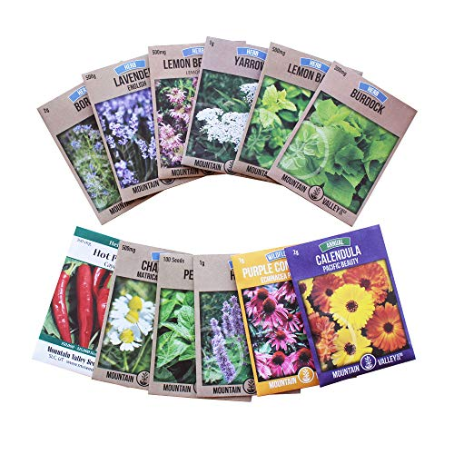 Living Whole Foods Medicinal Herb Seed Assortment - Non-GMO Healing Herb Seeds - Burdock, Cayenne, Yarrow, Chamomile, Hyssop, Echinacea, More - Bergamot Herb