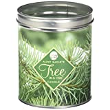 """Aunt Sadie's Candles Pine Boughs Famous Pine Tree-in-A-Can Candle, 4 3.25"""""""