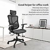 Argomax Ergonomic Mesh Office Chair High Back
