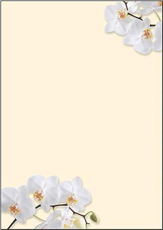 SIGEL DP904 Papel de cartas, 21 x 29,7 cm, 90g/m², orquídeas ...