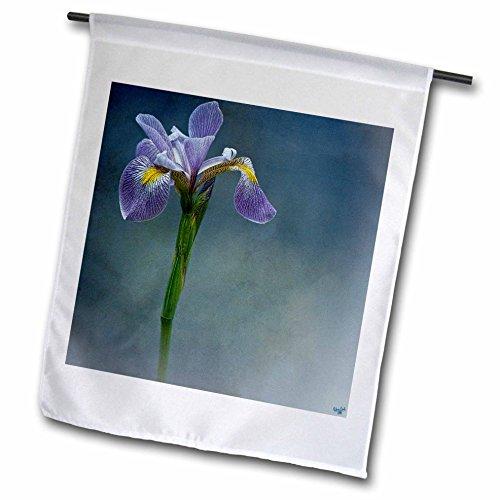 Iris Mist (3dRose Chris Lord Botanica - Iris Mist Blue Floral Flower - 12 x 18 inch Garden Flag (fl_55962_1))