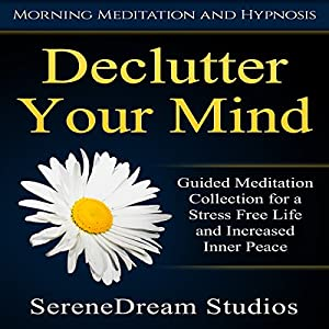 Declutter Your Mind Speech