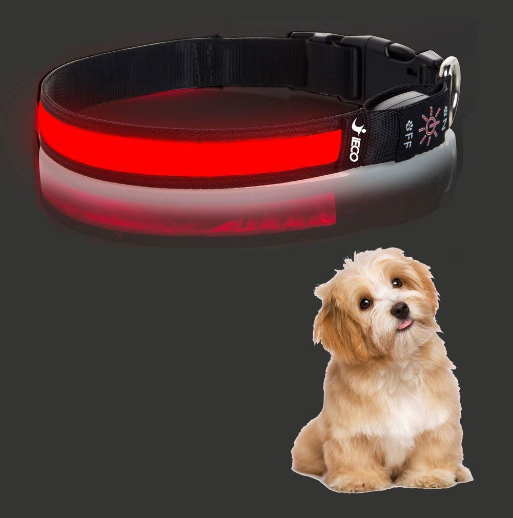 iECO LED Dog Collar – Upgrade USB Rechargeable Light Up Adjustable Soft Dog Collar w/3 Flashing Modes, Makes Your Dog Visible, Safe & Seen