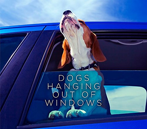 Dogs Hanging Out Of Windows (Blu Hanging)