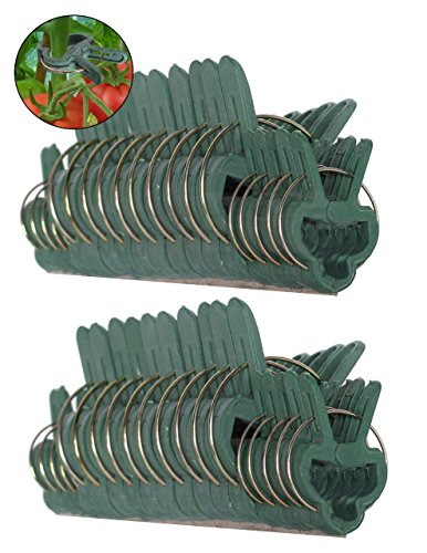 Ram-Pro 40 piece Green Gentle Gardening Plant & Flower Lever Loop Gripper Clips, Tool for Supporting or Straightening Plant Stems, Stalks, and - Tomato Plants Grape