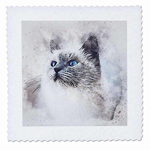 3dRose Sven Herkenrath Animal - Cat Pet Animal Kitty Love Watercolor - 22x22 inch quilt square (qs_280278_9) by 3dRose