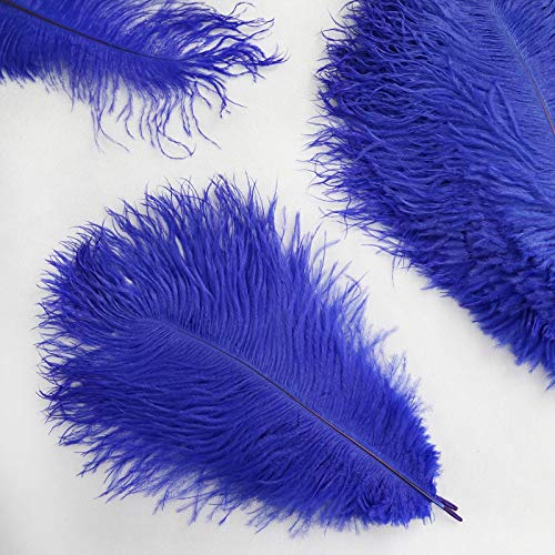 BalsaCircle 12 pcs 13-15-Inch Long Royal Blue Authentic Ostrich Feathers for Centerpieces Wedding Party Table Decorations ()