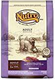 NUTRO Sensitive Stomach Dry Dog Food, Venison, Brown Rice and Oatmeal, 15 lbs.