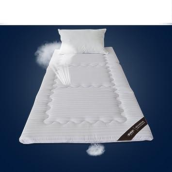 FUIOLWP Colchón Suave estupendo/colchón/colchones Plegables Tatami/Estudiante,Dormitorio,colchón/colchón-A 90x200cm(35x79inch): Amazon.es: Hogar