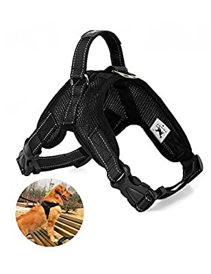 PeterIvan Dog Harness - Dog Breathable Walking Harness For Medium And Large Dogs, Comfort Control, Adjustable Dog Vest Harness For Any Pets With No Pulling, Tugging or Choking