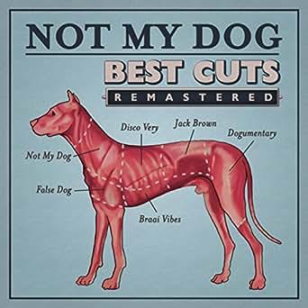 Dodgy Dog by Not My Dog on Amazon Music - Amazon com