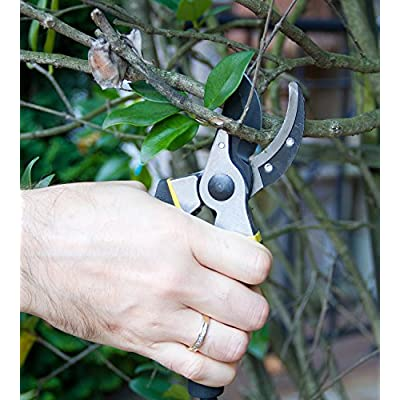 Astorn Bypass Pruning Shears for Garden Maintenance | Branch Clippers & Rose Pruning Shears | Hand Pruners with Ergonomic Handles, Shock-Absorbent Spring & Safety Lock | Gardening Scissors Set : Garden & Outdoor