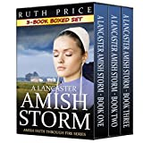 A Lancaster Amish Storm 3-Book Boxed Set Bundle (Amish Identity 1)
