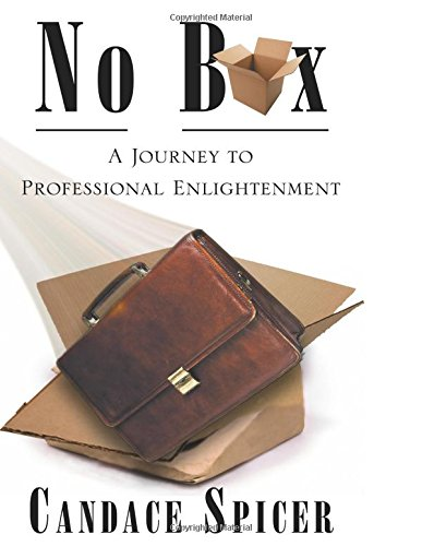 No Box: A Journey to Professional Enlightenment ebook