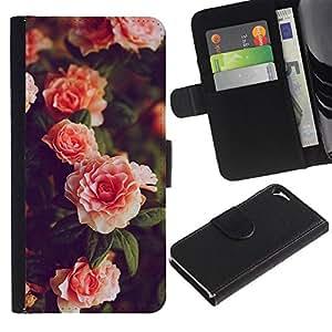 TORNADOCOVER Diseño Trasera Imagen Cuero Voltear Tarjeta Ranura Duro Funda Negro Borde Carcasa Case Cover Skin para Smartphone Apple Iphone 5 5S - rosas de color naranja rosa jardín arbusto blanco