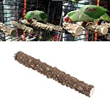 Natrual Wood Perch Stand Toy for Bird Parrot Budgie Parakeet Cockatiel Conure Lovebird Finch Lovebird Macaw African Grey Cockatoo Cage Platform