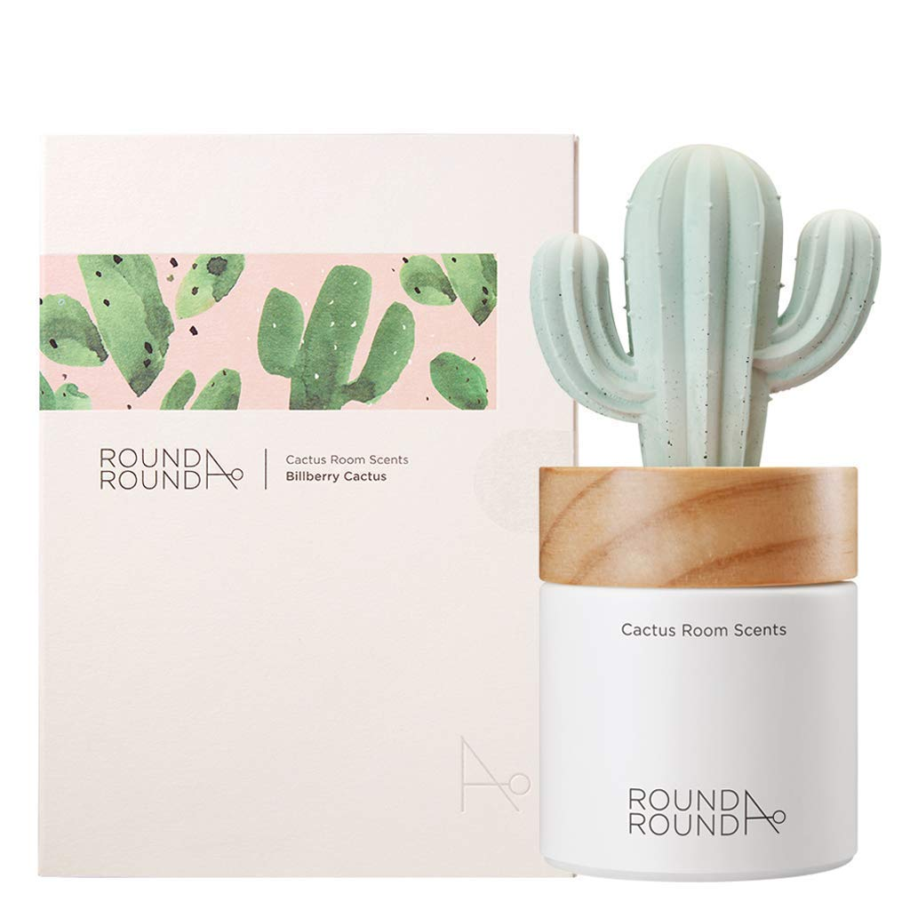 ROUND A'ROUND] Cactus Room Scents 100ml + Refill 80ml / Gypsum Reed Fragrance Diffuser Fragrant Homes, Rooms, Office, Bathroom, Living room (Billberry Cactus)