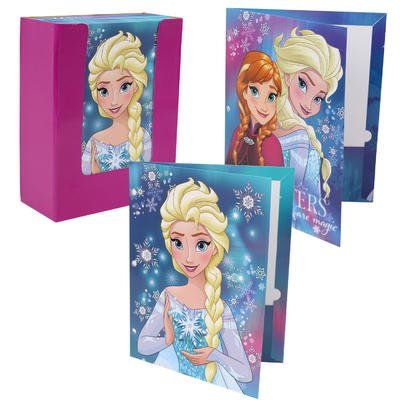 Disney Frozen 2 pocket Portfolio graphics