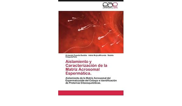 Aislamiento y Caracterizacion de La Matriz Acrosomal ...