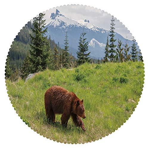 iPrint Cool Round Tablecloth [ Bear,Wildlife up in The Mountains Theme Furry Animal Carnivore Yellowstone Nature Habitat,Green Brown ] Fabric Home Tablecloth ()
