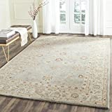 Safavieh Antiquity Collection AT822A Handmade Grey Blue and Beige Wool Area Rug, 8 feet by 10 feet (8' x 10')
