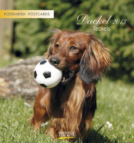 Dackel, Teckels 2013 Postkartenkalender