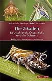 Die Zikaden Deutschlands, Österreichs und der Schweiz: Entdecken – Beobachten – Bestimmen (Quelle & Meyer Bestimmungsbücher)